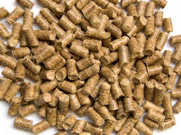 Бизнес план по производства древесных топливных гранул (пеллет)