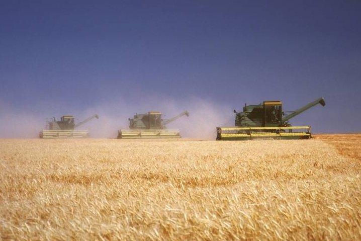 Бизнес план приобретения сельскохозяйственного предприятия