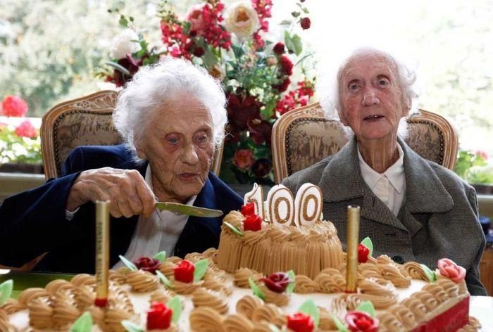 Бизнес план частного дома престарелых