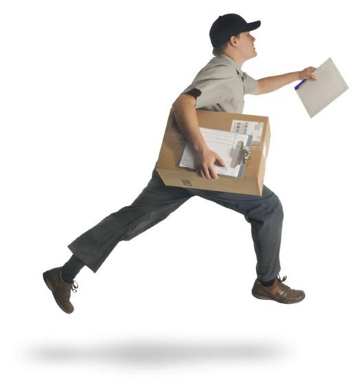 Бизнес план курьерской службы и экспресс доставки почты и документации