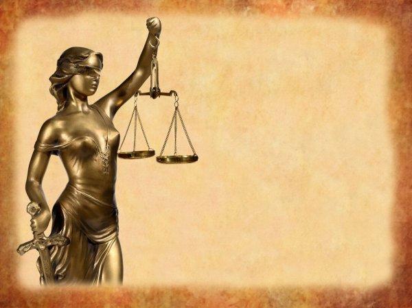 Бизнес план оказания юридических и бухгалтерских услуг