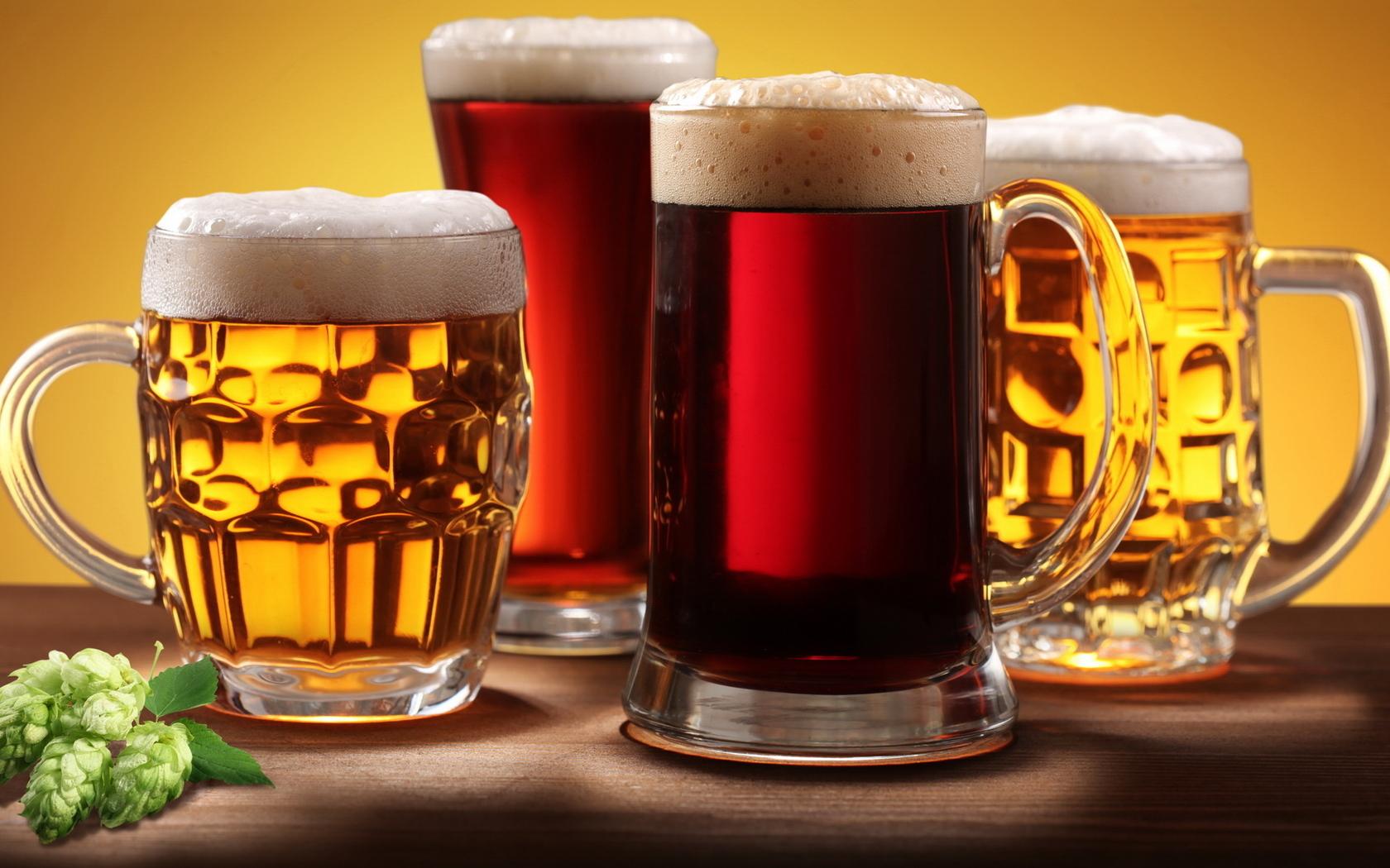 Бизнес план оптовой продажи пива