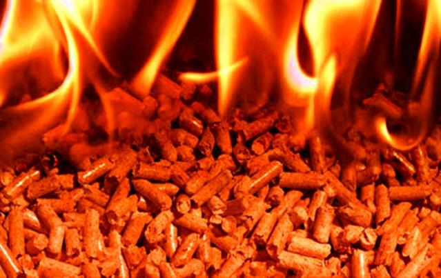 Бизнес план производства древесных топливных гранул
