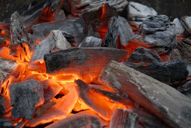 Бизнес план производства топливных брикетов, гранул и древесного угля