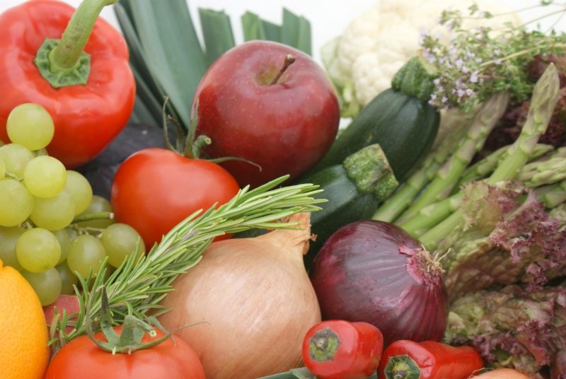Бизнес план выращивания фруктов и овощей